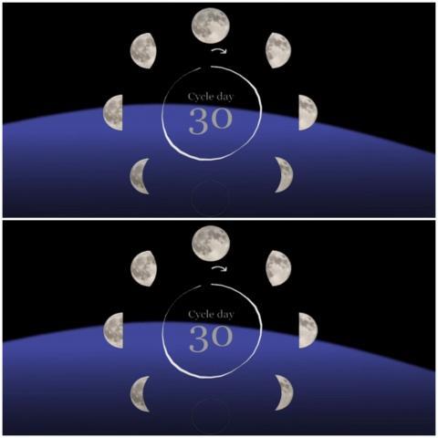 يشير نمط نومنا إلى أن إيقاعاتنا اليومية الطبيعية متزامنة بطريقة ما مع مراحل الدورة القمرية (يوتيوب-جامعة واشنطن)