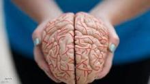 منطقة الدماغ ما زالت تثير فضولا علميا كبيرا