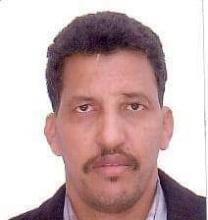 الدكتور / محمد ولد الرباني
